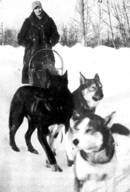 Photo of Wuka with dog team